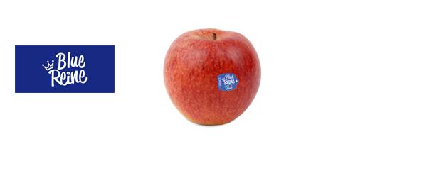 Les pommes Blue Reine