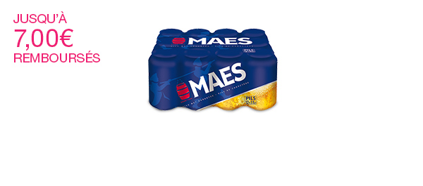 Maes 12x33cl. 5.2%