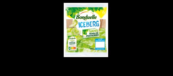 Iceberg Bonduelle