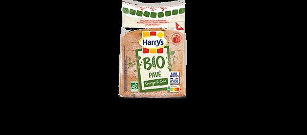 Pavé Bio Aux Graines Harrys