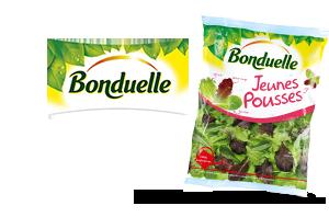 Bonduelle salades