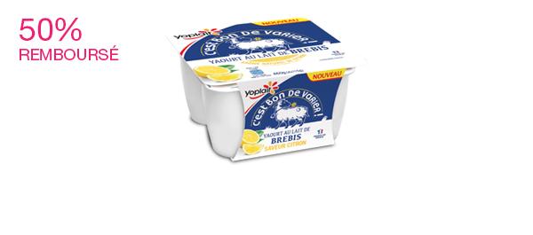 Les yaourts au lait de brebis