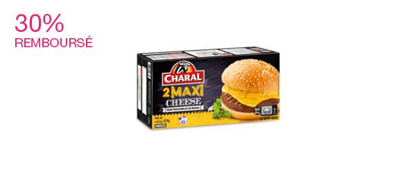 Maxi Cheese x2