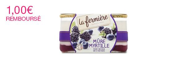 Les yaourts onctueux sur lit aux fruits