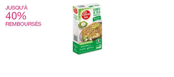 Les galettes de soja
