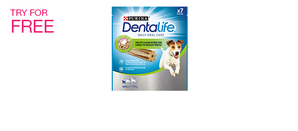Dentalife - smaller pack