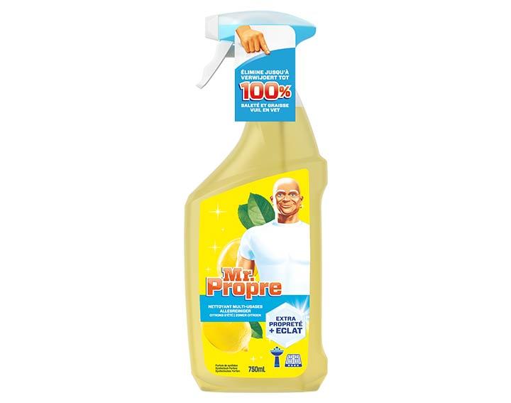 Mr. Propre Spray Nettoyant Citrons d'été 75cl