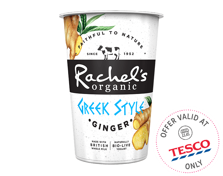 Greek Style Ginger Yogurt 450g