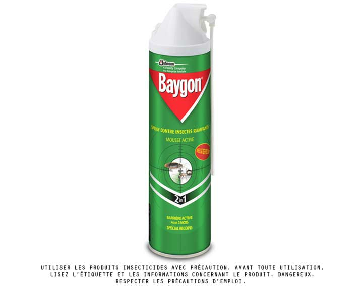 Baygon® mousse anti-rampants