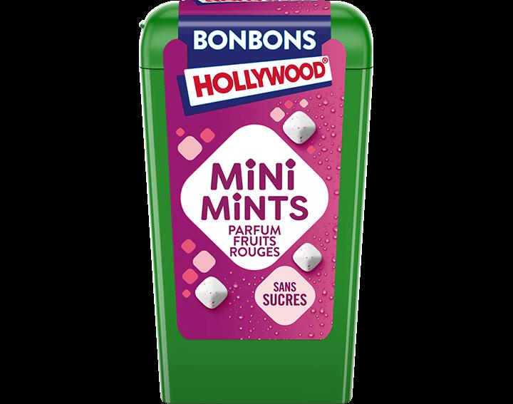 Mini Mints Parfum Fruits Rouges - 12,5g