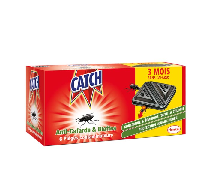 Catch Contaminateurs Anti-cafards - 6 contaminateurs