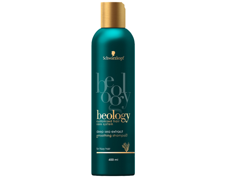 Shampooing Lissant 400ml